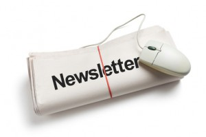 Newsletter - Subscription Business Model